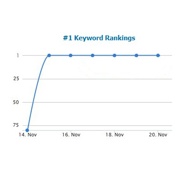 multiple number 1 rankings with search engine google