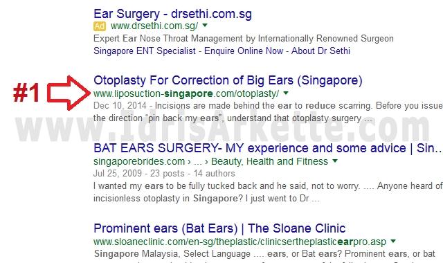 top SEO singapore company